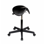 007 Saddle stool